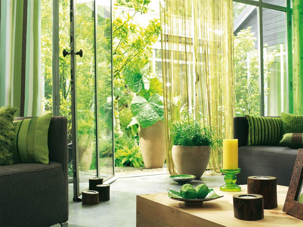 Maneras de crear un hogar verde y saludable