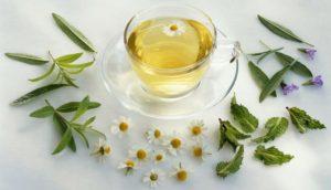 Taza de té con hierbas alrededor