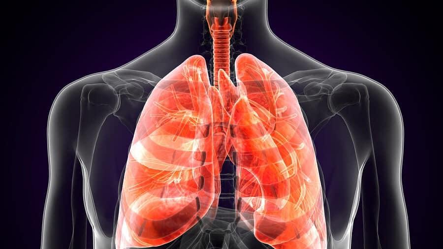 Qué es la peste pulmonar